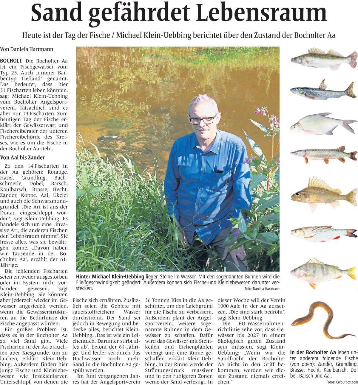 tag-der-fische-sandfracht-in-der-aa