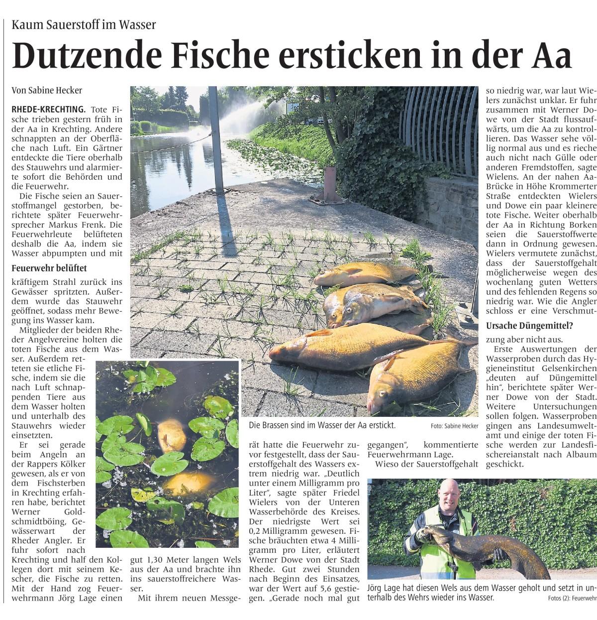 BBV 15 06 2018_Fischsterben Aa Rhede.jpg